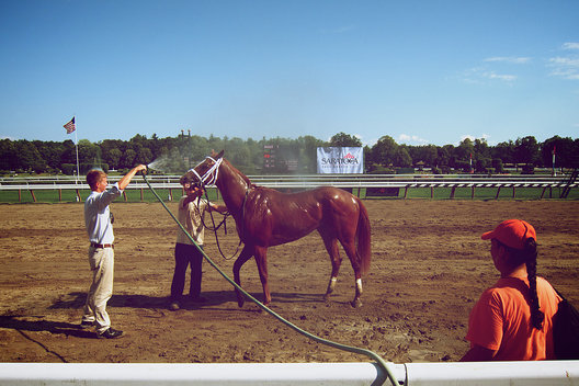 Saratoga Race Track, July 31, 2011.  Editorial Use ONLY.  NO model release.