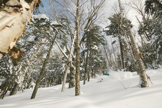 Galin Foley skiing powder snow at Killington, Vermont. Feb, 2015.